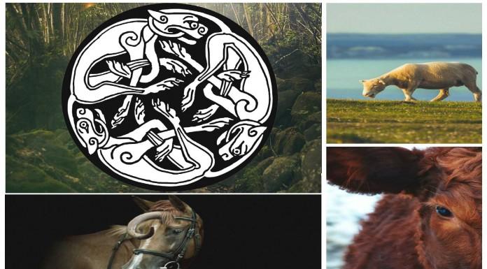 ¿Descubiertos restos de animales híbridos en un cementerio celta?
