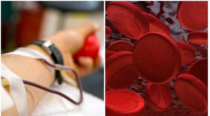 Donar sangre: ¿quién puede y quién no?