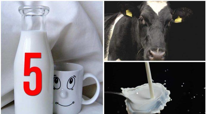 5 mitos sobre el consumo de leche