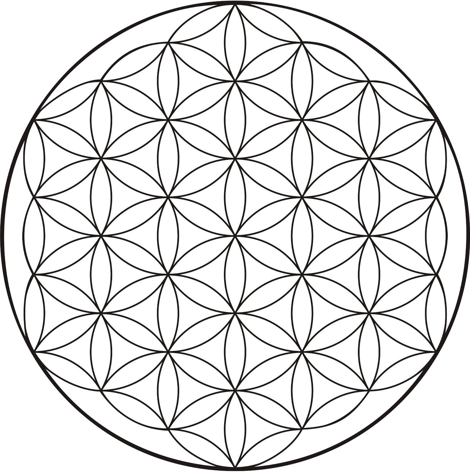 Geometría Sagrada La Flor De La Vida