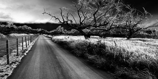 soñar con caminos o rutas