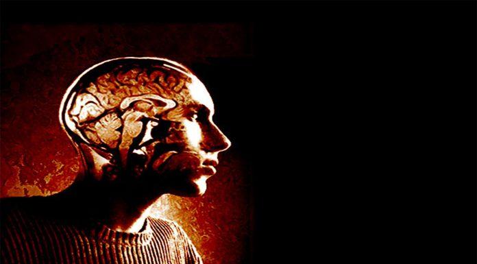 10 datos sobre el cerebro de los hombres que tener en cuenta