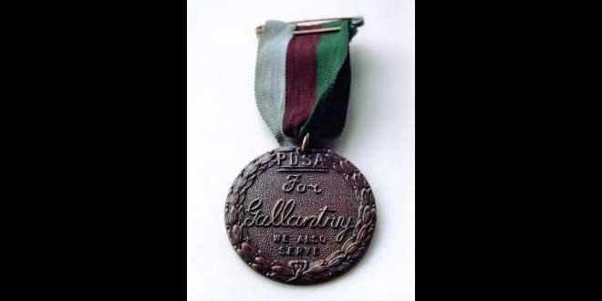 La medalla DICKIN: la Cruz Victoria al valor de los animales