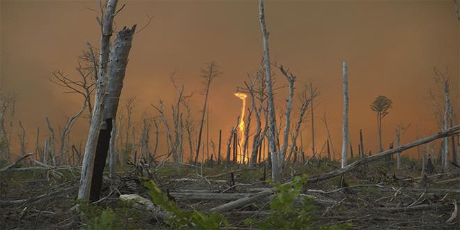 """Tornado de fuego o """"dedo del diablo"""": EXISTE"""