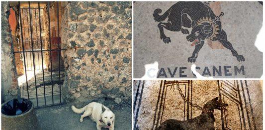 Mejor no ser perro en la antigua Roma