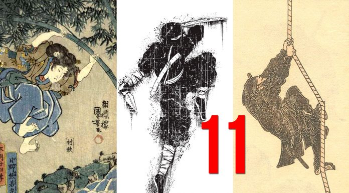 11 datos de los Ninjas que quizá ignorabas