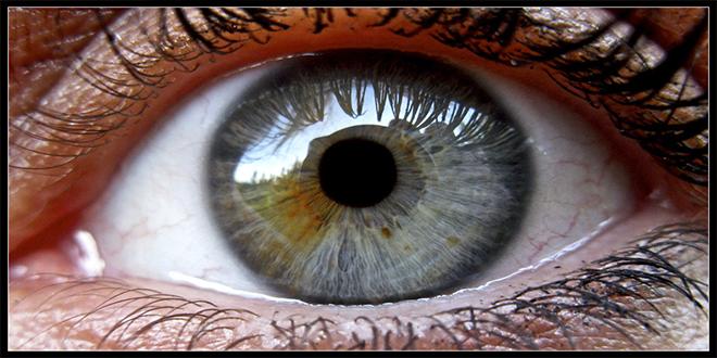 El iris humano NO tiene pigmento azul ni verde, ¿cómo se tienen esos colores?