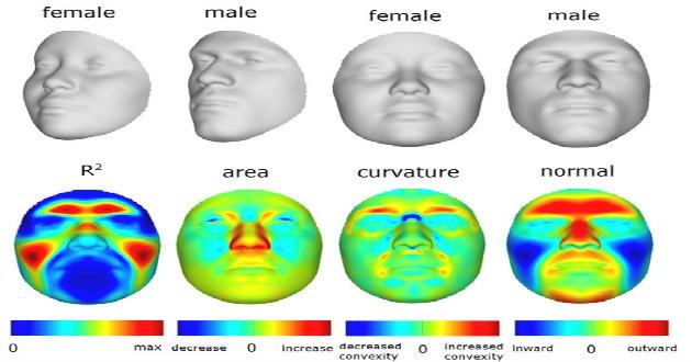 ¡Increíble el ADN tiene rostro!