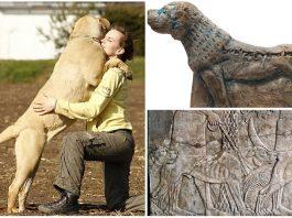 Molosos, los perros guerreros de la antigüedad