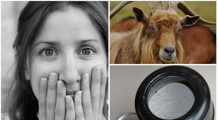 10 cosas curiosas olvidadas en la habitación de un hotel