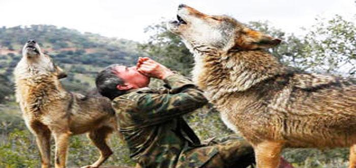 El casi desconocido caso del niño criado por lobos ¡En España!