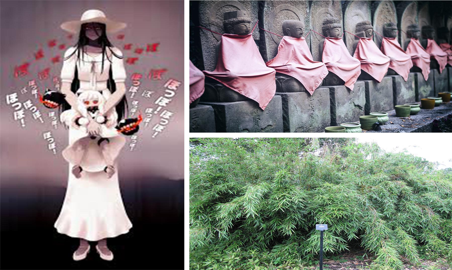 Historia de la mujer vestida de blanco