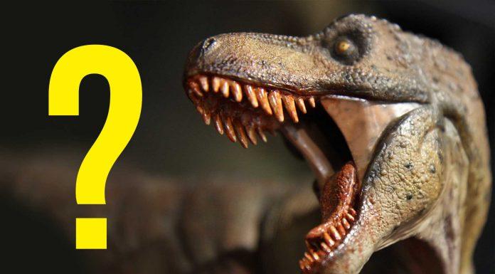¿Qué sonido hacían los dinosaurios? Ahora sabemos que NO sonaban como los pájaros