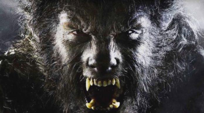 Licantropía clínica: Los verdaderos hombres lobo ¿De qué se trata?