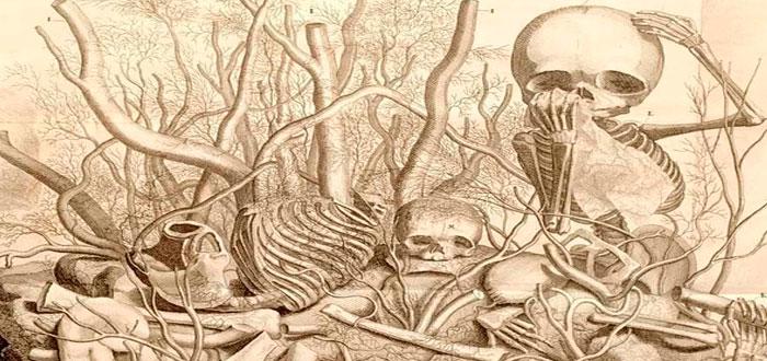 Los macabros dioramas del siglo XVII: hechos con cadáveres, también de bebés