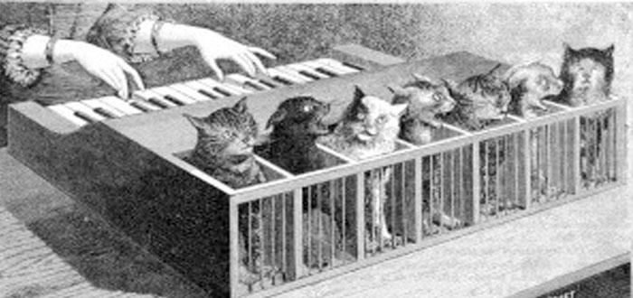 El Katzenclavier: ¡¿un piano hecho de gatos?!