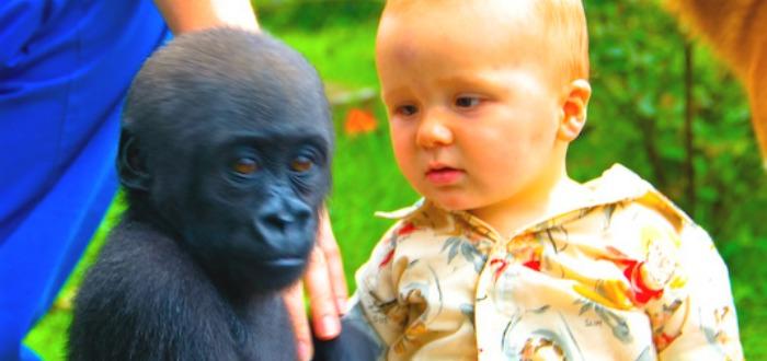 Los bebés pueden ver y oír cosas que nosotros no podemos