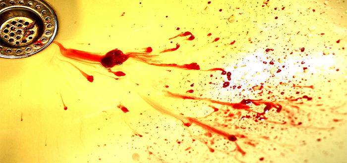 La casa llena de sangre