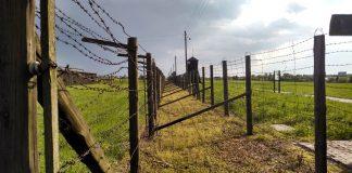 a historia del más impresionante escape de prisioneros bajo el régimen nazi
