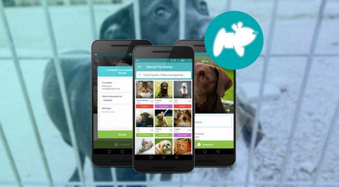 Miwuki: la app que te permite adoptar a tu mascota sin moverte de casa 1