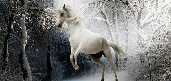 Animales que según la tradición guían a las almas al más allá.