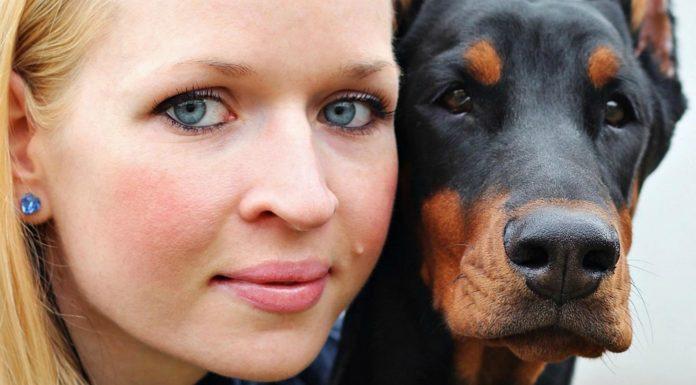 ¿Es cierto que las personalidades de perros y dueños se parecen?