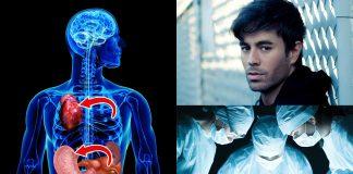 Situs inversus: un 0,01% de las personas tiene los órganos volteados 1