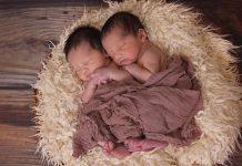 5 curiosidades sobre los gemelos que debes saber