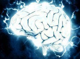 El proyecto de Elon Musk que busca fusionar el cerebro humano con Inteligencia Artificial (2)