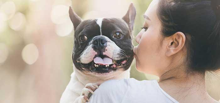 ¿Pueden los perros mentirnos o engañarnos?