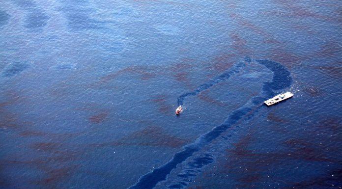la brillante forma de limpiar derrames de petróleo en la que trabajan los científicos 1