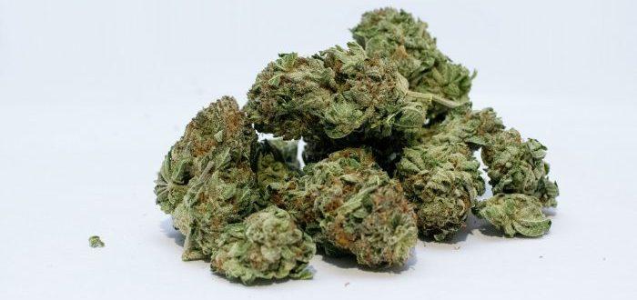La diferencia entre ingerir marihuana comestible y fumarla