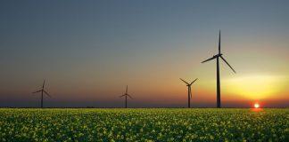 The Solutions Project, el plan para dar energía 100% renovable a 139 países