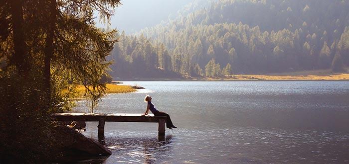 terapia del silencio, bosque