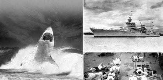 El PEOR ataque de tiburones de la historia. De pesadilla