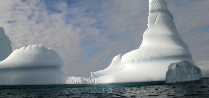 La Antártica se está tornando más verde y este es la razón