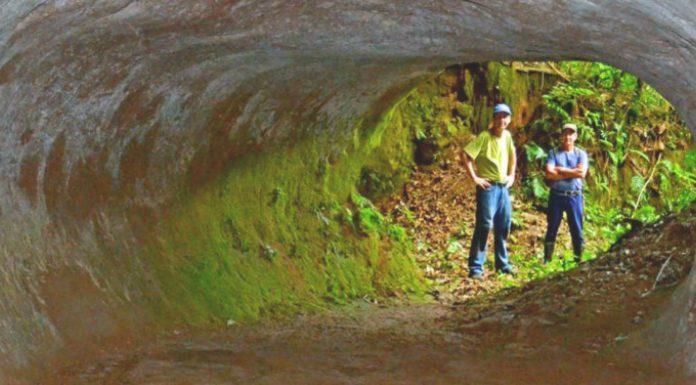Hallan unos MISTERIOSOS túneles que NO cavó el ser humano. ¿Qué gigantesca criatura lo hizo?