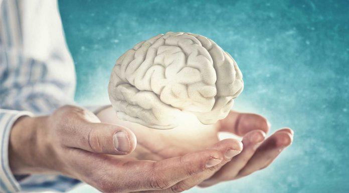 ¿Cuál es el mejor ejercicio para tu cerebro