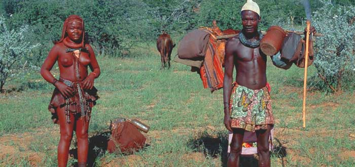 La tribu con la mejor visión del mundo, himba, ganado