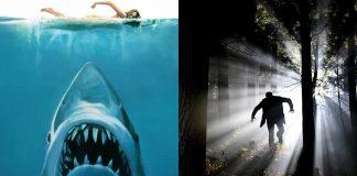 """El """"Efecto Tiburón"""" o miedo instintivo evolutivo que padecemos hoy"""