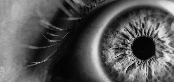 ojo, mejor visión del mundo