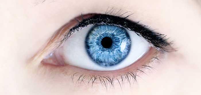 ojos azules, fotografía de cerca