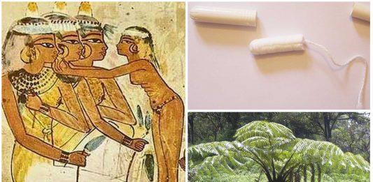 Tampones en la historia. ¿Sabías que las egipcias ya los usaban?