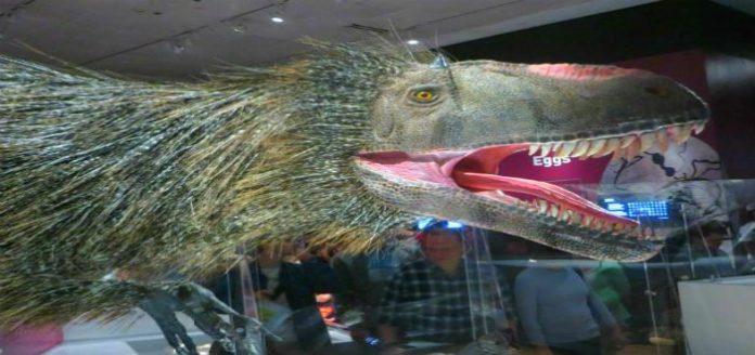 10 tipos de dinosaurios que no te enseñaron en Jurassic Park
