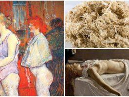 La corteza de olmo, un abortivo histórico y sus peligros