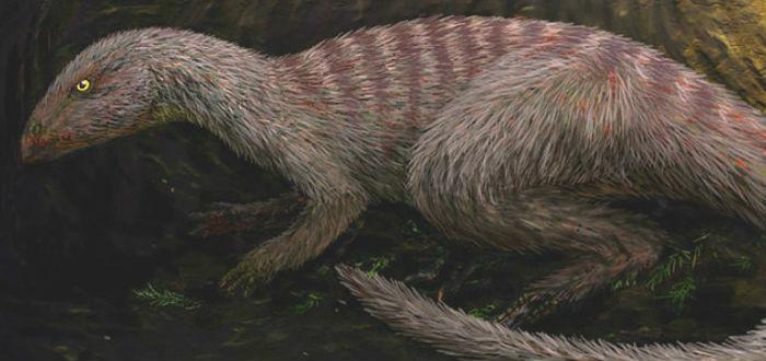 dinosaurios que no viste en Jurassic park