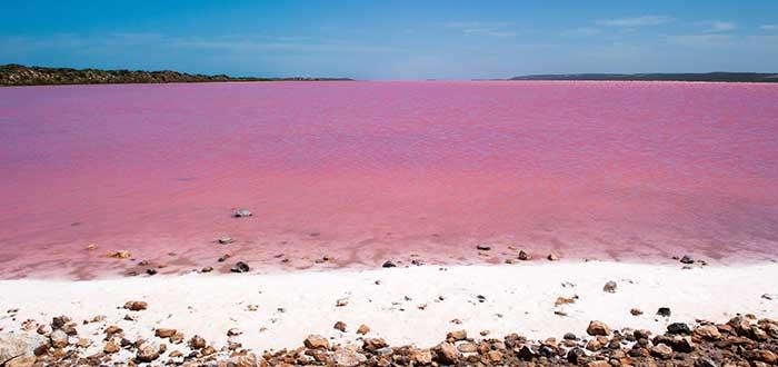 cosas rosas, lago rosa, lago hillier, australia