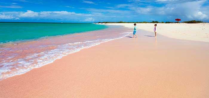 Playa arena rosa, Bahamas, cosas rosas