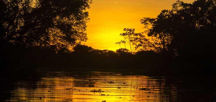 río amazonas, piraha