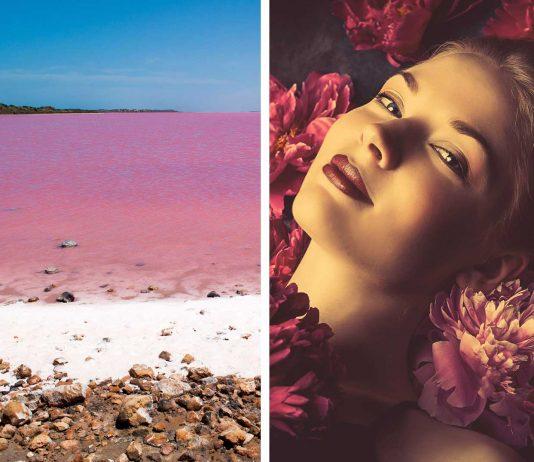 ¿Te encanta el rosa? Estas cosas rosas de la naturaleza te encantarán